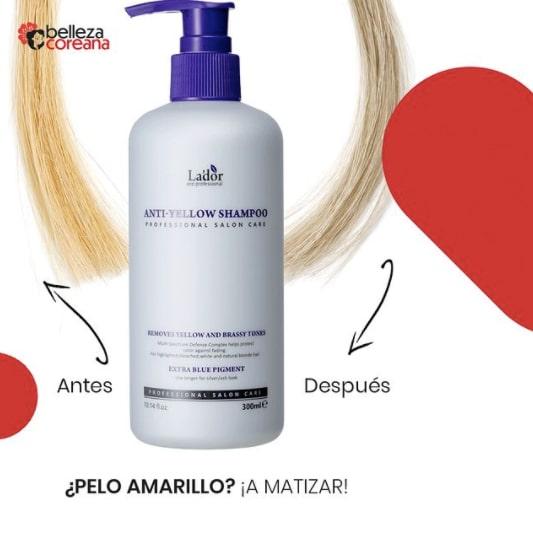 Shampoo Anti Yellow