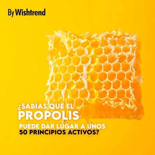 Propolis y sus activos